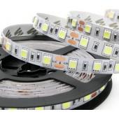 SMD 5050 5M 300 LED Flexible Strip Light Non Waterproof DC 12V
